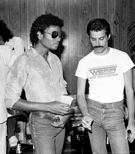 Freddie Mercury El Mejor Libro Sobre Su Vida Pyd